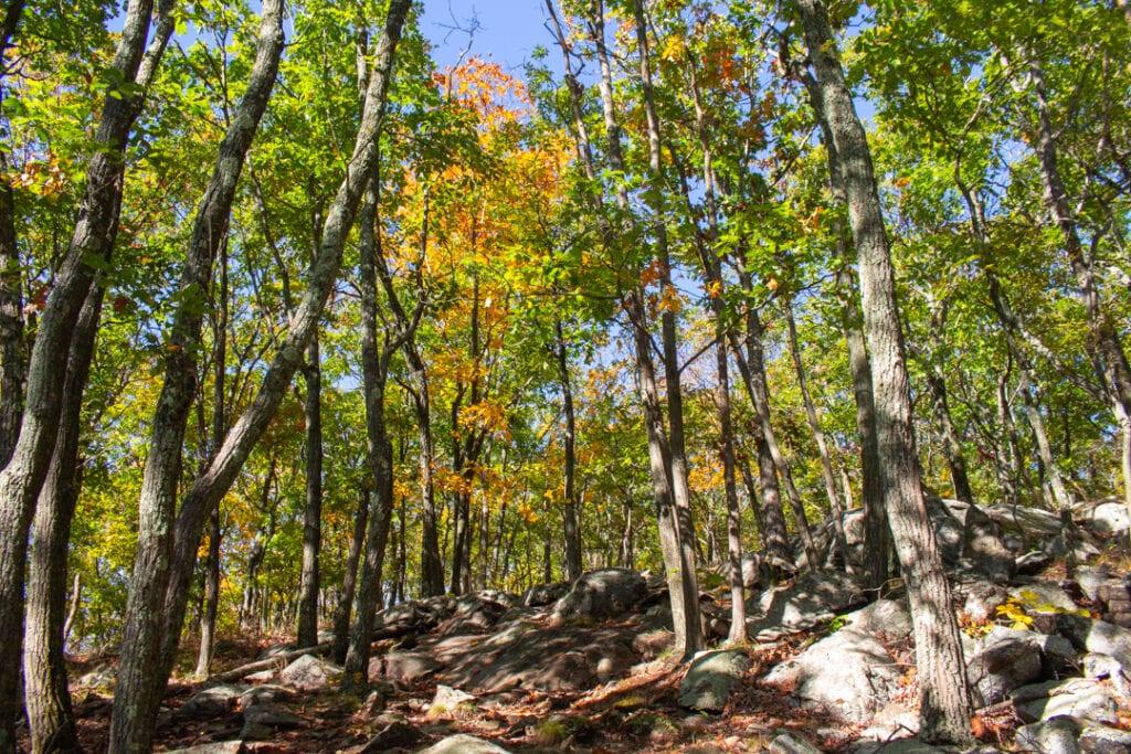 Fall Photos Ideas from Hudson Valley NY