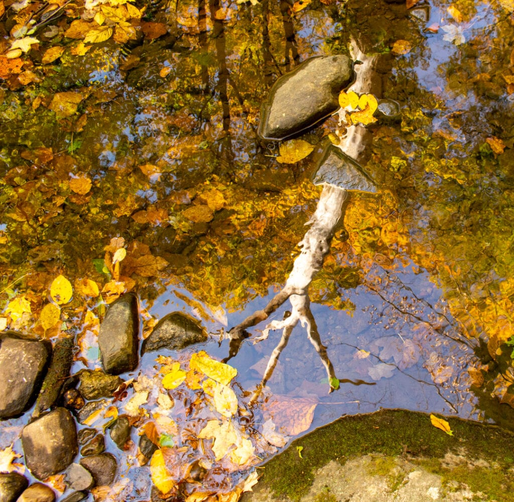 fall photo ideas from hiking in Hudson Valley NY