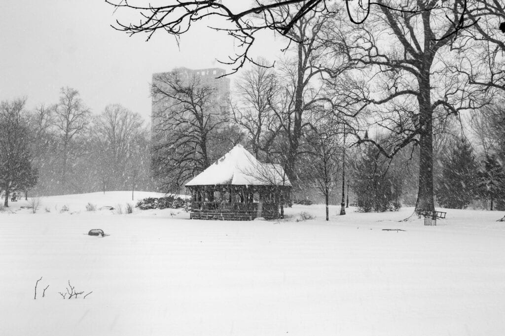 Black and white winter photography