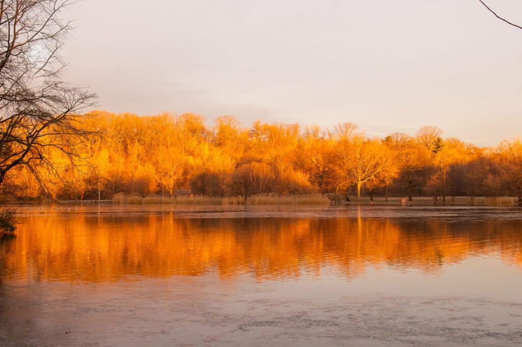 Landscape Photograph the colors of winter