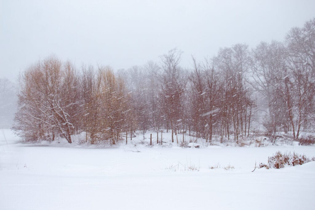 Winter Landscape Photography in Brooklyn NY