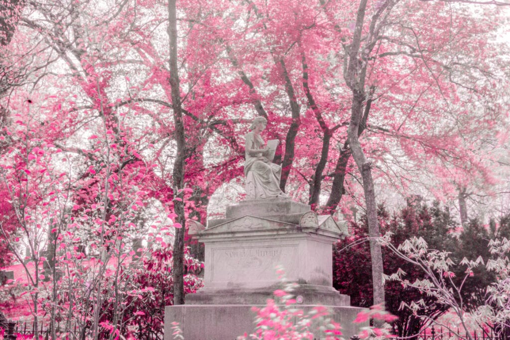 Pink Infrared Monument