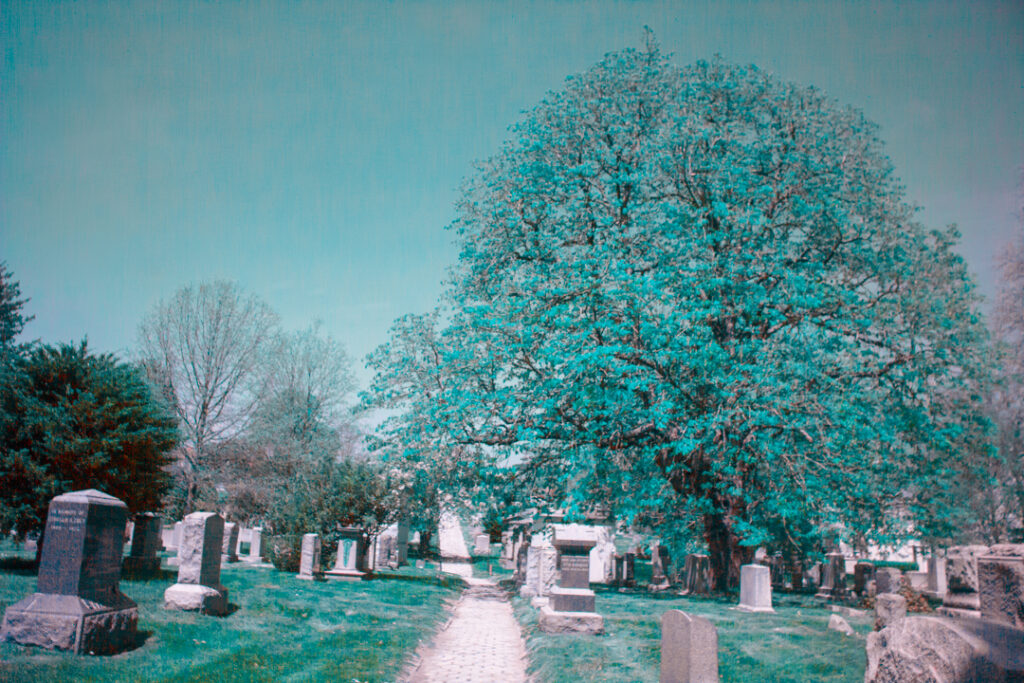 Infrared Greenwood Cemetery