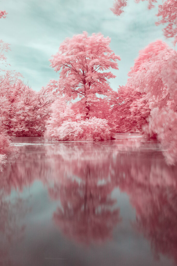 Turning Nature into Colorful Infrared Landscapes