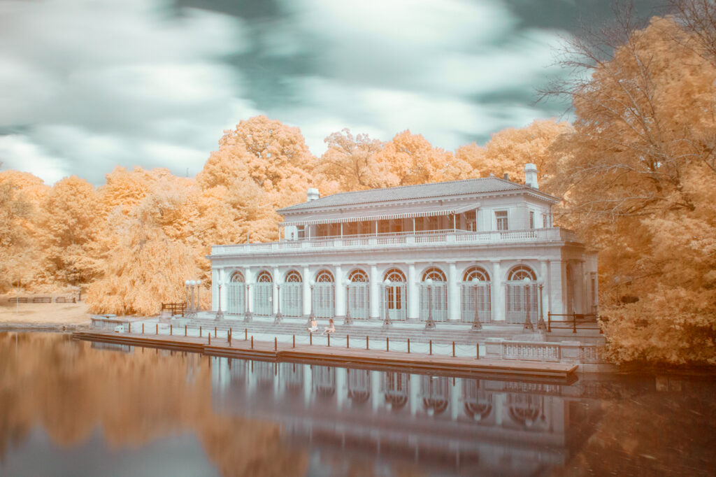 Fall like Infrared Photograph